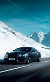 Bentley: Concours Series и Concours Series Black